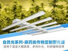 600W植物生长灯全光谱 跨境专选