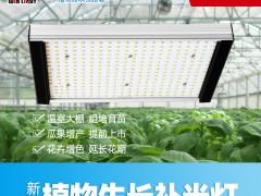 阳光系列 LED植物生长灯 100W