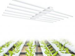 组培育苗led植物补光灯