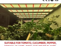 led植物照明未来的应用趋势