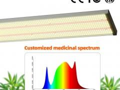 植物生长灯的主要分类和应用