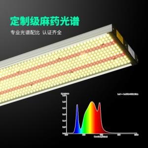 新款全光谱高光效生长植物补光灯