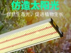 工厂现货植物灯 量子板led植物生长灯