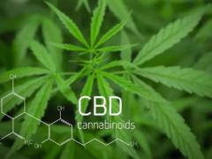 CBD跟THC有什么区别