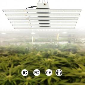 大麻LED植物生长灯
