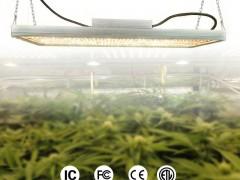 LED植物灯 温室种植灯