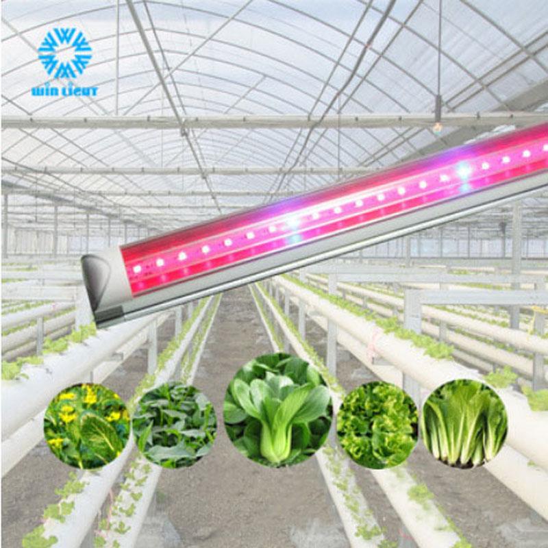 红蓝比LED植物补光灯单排