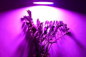 LED补光灯系列