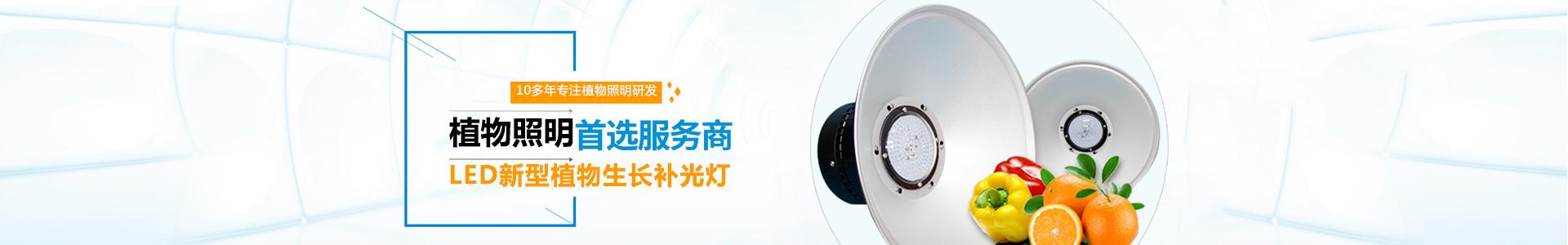 广东伟照业光电节能有限公司