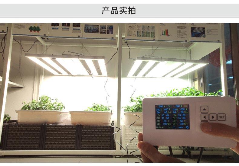 工业大麻led植物生长灯