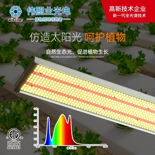 阳光系列全系列中文主图-11