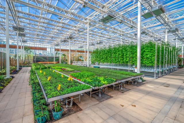 LED植物生长灯能促进植物生长的特究(上)